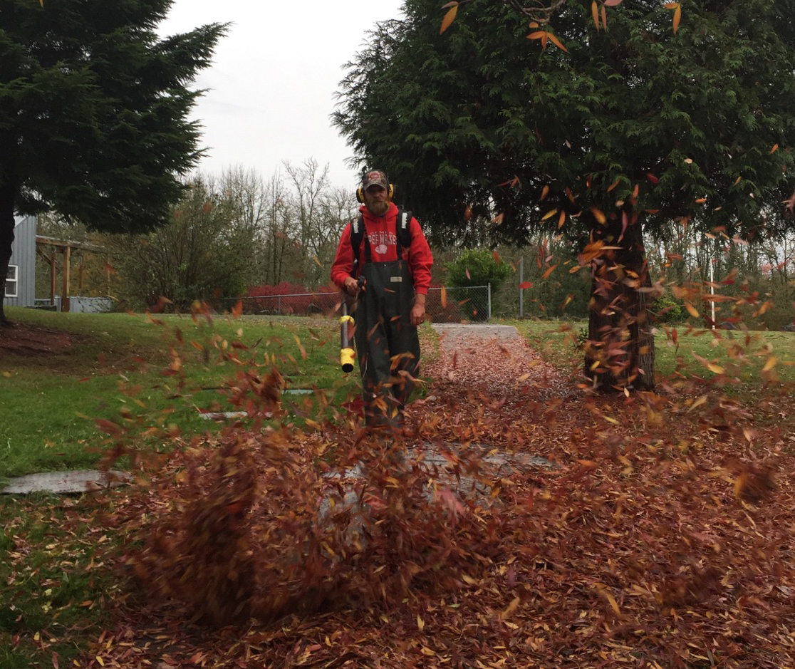 Joe Voogt blowing leaves with leaf blower.